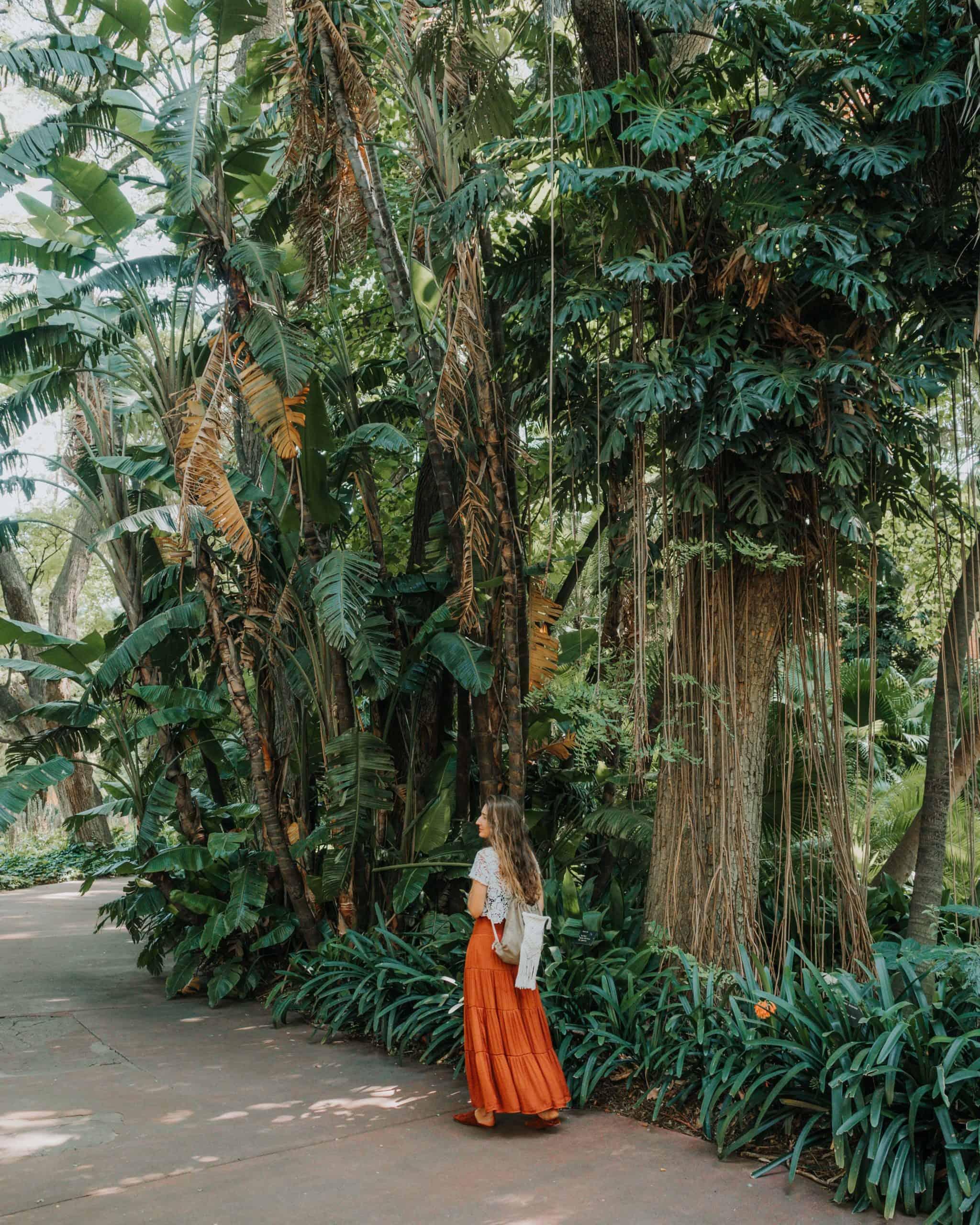 bothanical garden portrait Diana 2