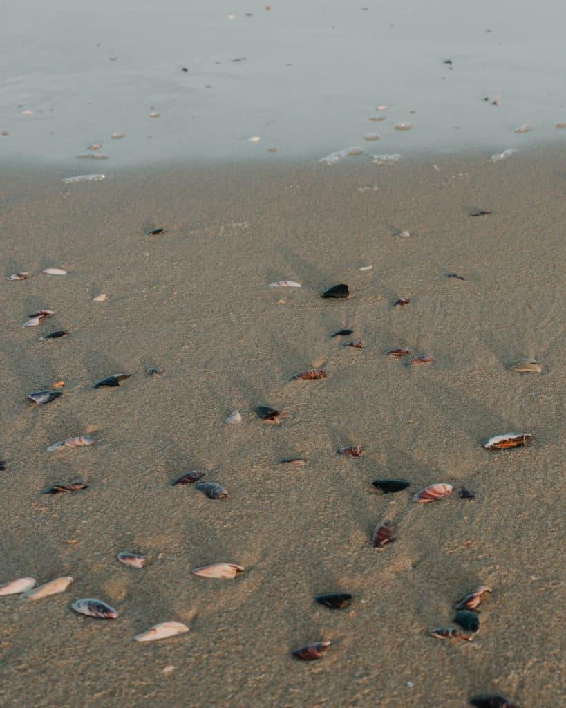 plaża z muszelkami Santa Teresa Przewodnik po urugwaju
