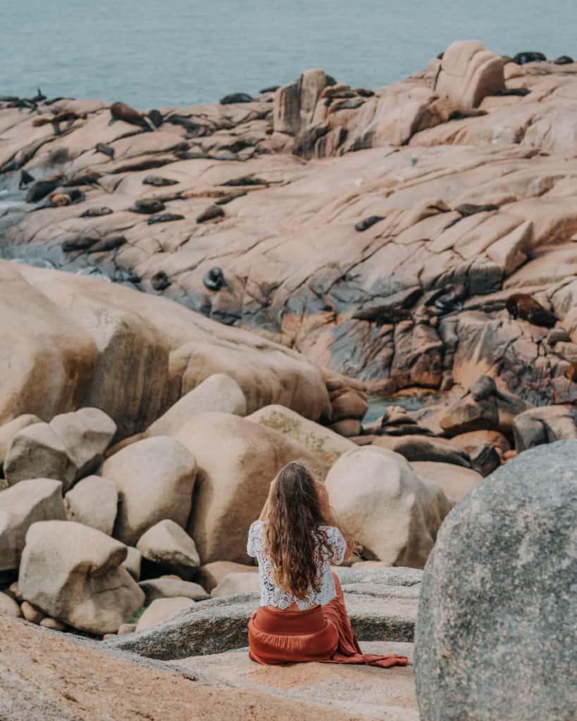 Lwy Morskie w Cabo Polonio Urugwaj