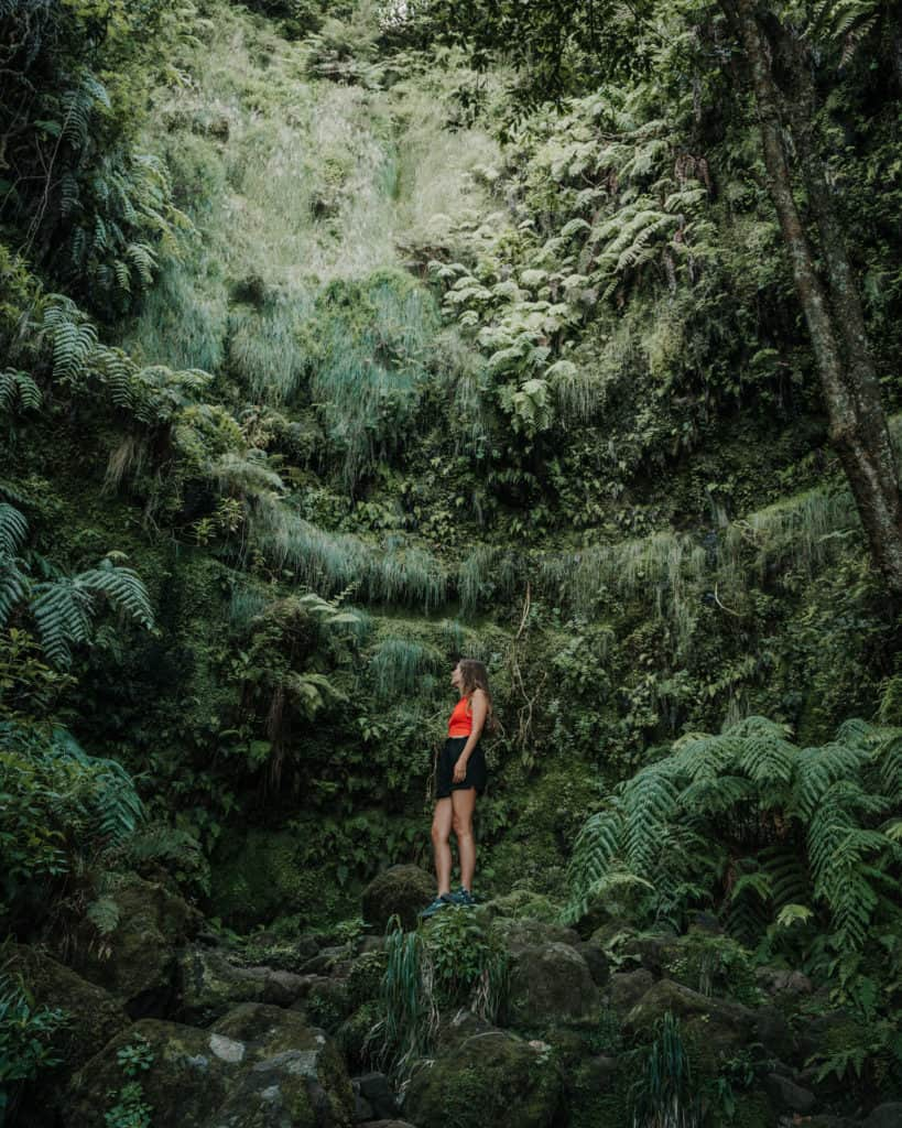 Levada do Caldeirao Verde Madera najlepsze szlaki