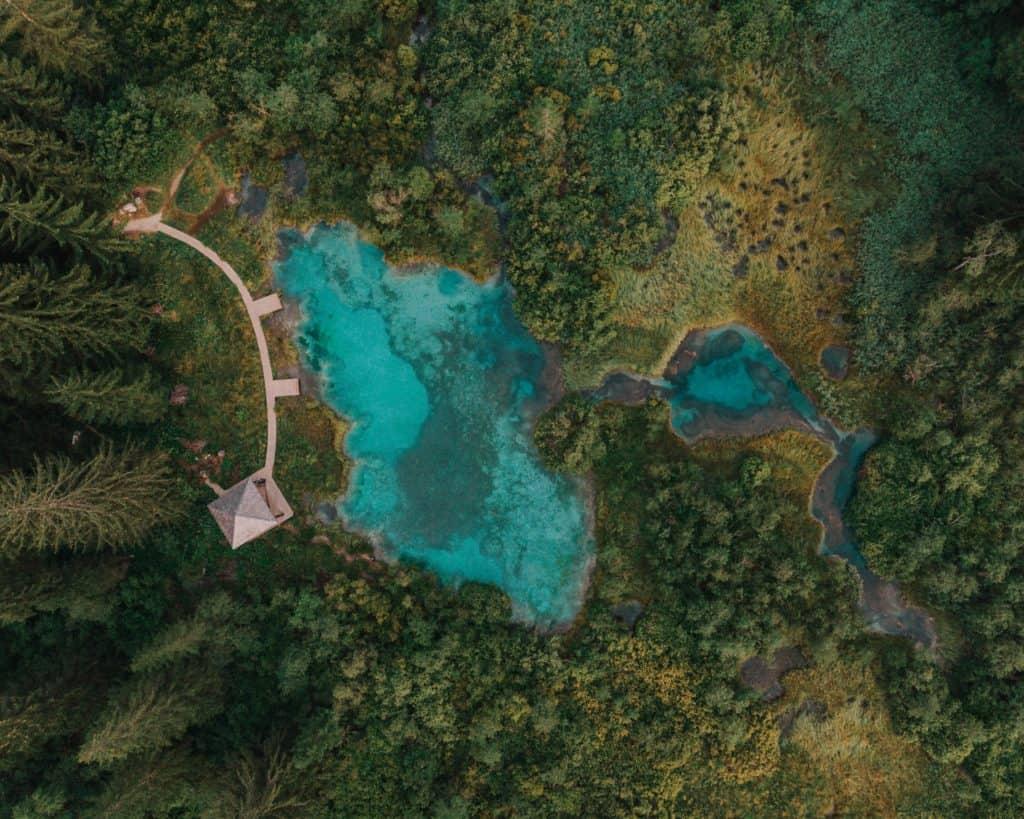 zelenci naturalny rezerwat co zobaczyć w słowenii europa