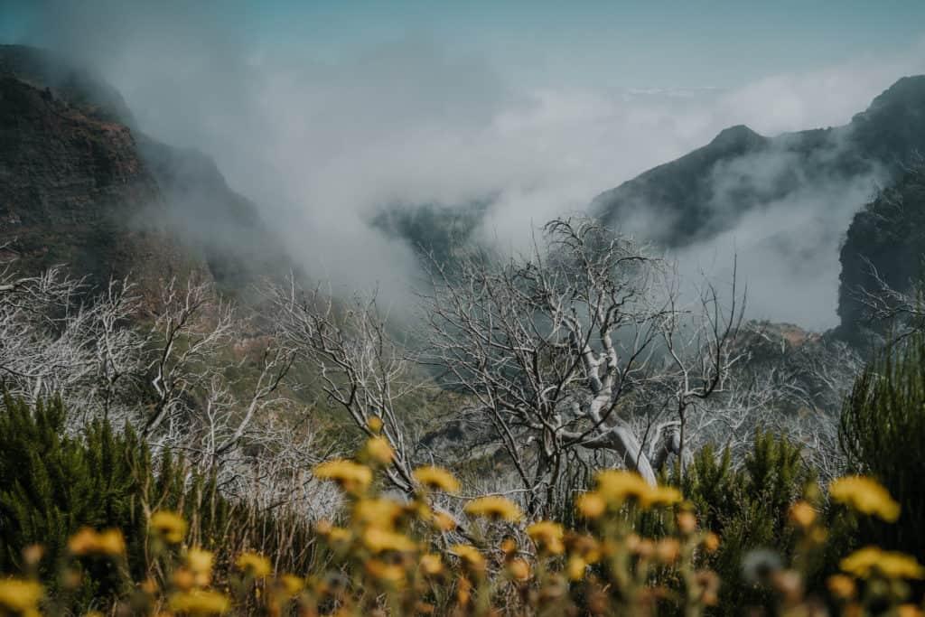 pico areeiro hike madeira