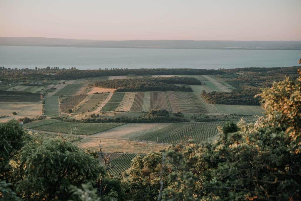 Hegyestű Balaton sunrise