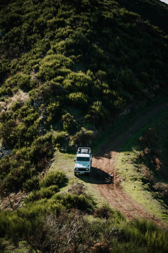 offroad na Maderze dragon tree travel