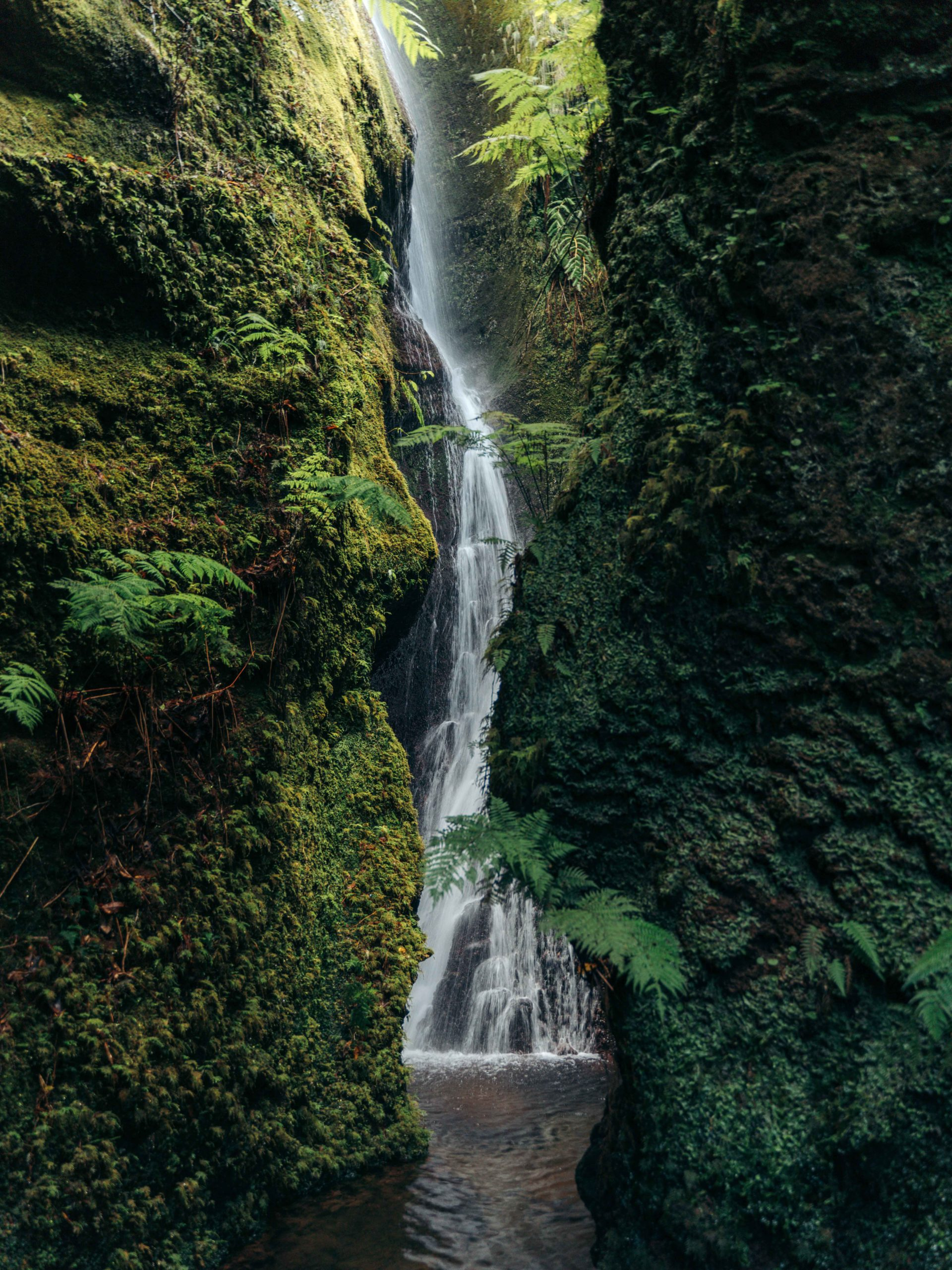 Wodospad Printy